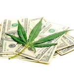 Marijuana is the Highest Growth Industry in the U.S